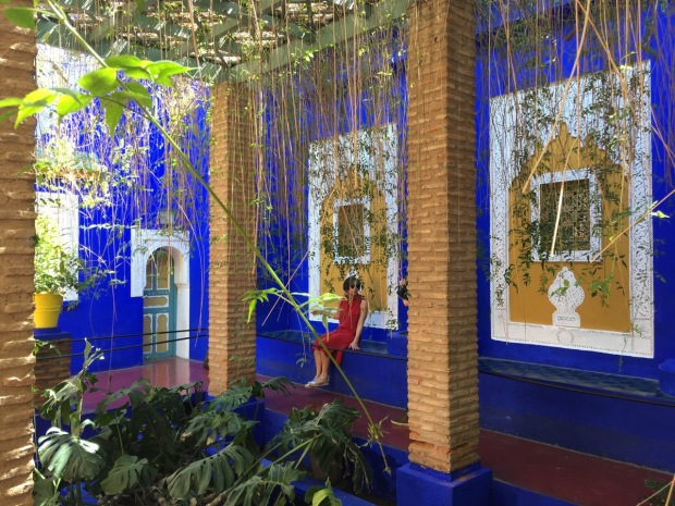 Marjorelle blue plays a strong theme in this garden. It literally merges into the bright sky and provides a fabulous foliage foil