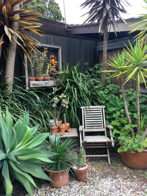 I adore the window ledges Steven has made and the tucked away chairs throughout the garden