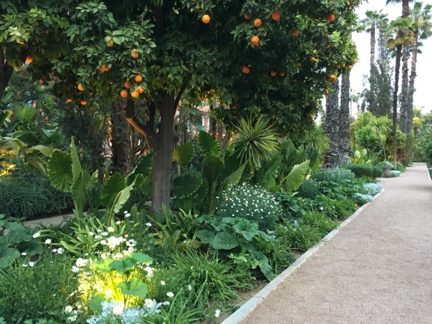 I loved the simplicity of the white garden beneath the fertile orange trees. Especially because it was so abundant! At La Mamounia