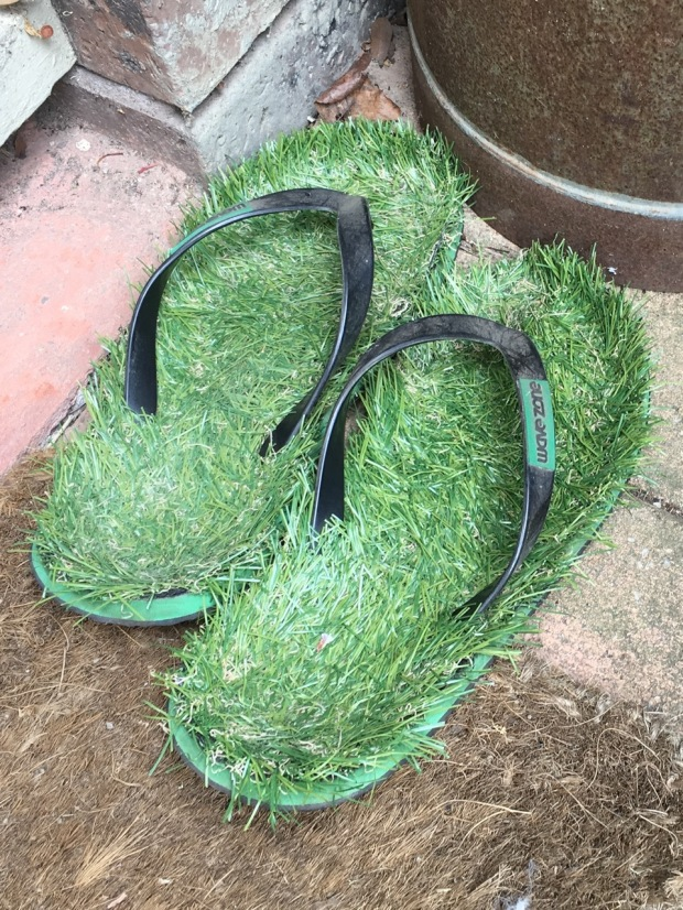If you don't have a lawn to walk on, have a pair of lawn thongs!