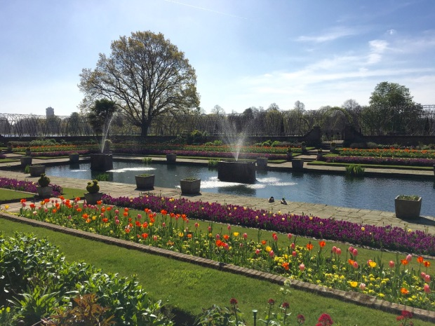 Kensington Palace gardens. A little formal for my liking, but the fountains and resident ducks brought it to life.