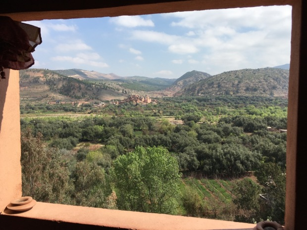 Looking out from a traditional Berber home, the landscape looks pretty green (did you spot the Eucalytus, bottom left?!)