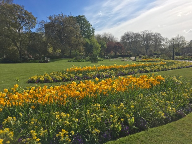 Spring bedding in Hyde Park. Stunning colours and graceful curves give appeal to a style of planting I'm not usually so fond of