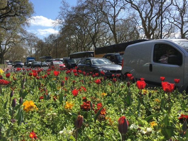 There are worse places to be stuck in traffic than Park Lane, on the outskirts of Hyde Park