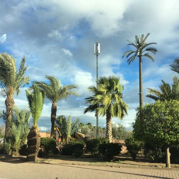 Wonderful mobile mast palm trees. Innovation at its best!