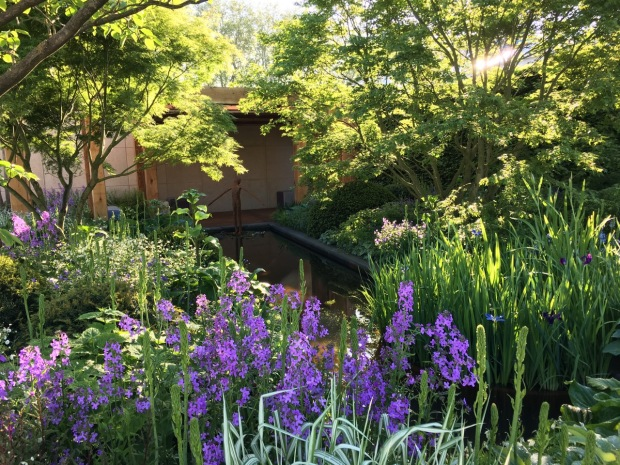 Chris Beardshaw: The Morgan Stanley Garden for Great Ormond Street Hospital
