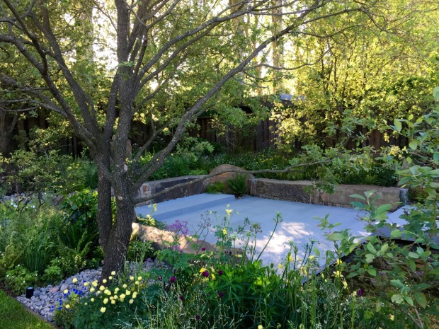 New meets old in Cleve's Chelsea 2016 garden