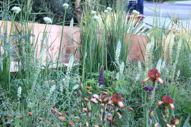 Colour, texture and form are expertly combined in Nick Bailey's Chelsea garden