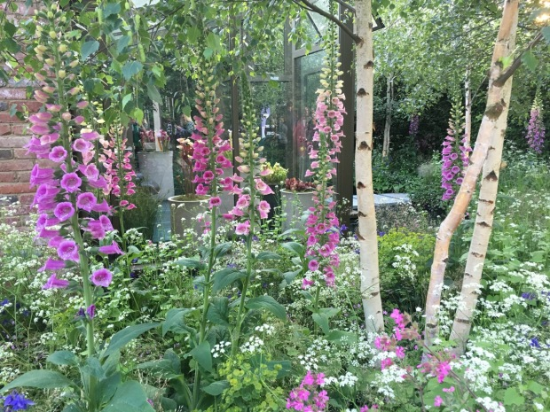 The Hartley Botanic Garden by Catherine McDonald, Chelsea 2016