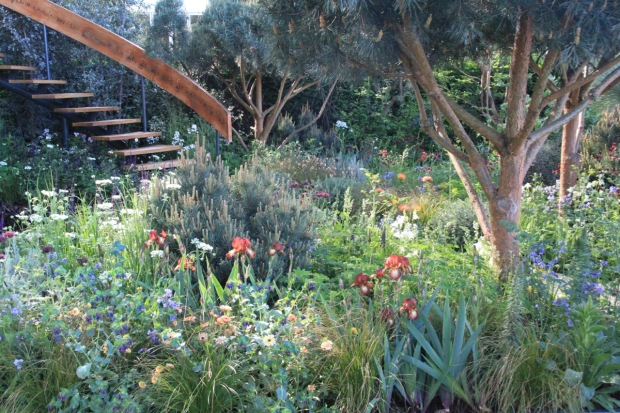 Very dense planting around the Mathematics Garden building. Nick Bailey