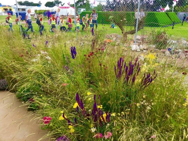 Hampton 2016: UNHCR 'Border Control' Garden by Tom Massey and John Ward
