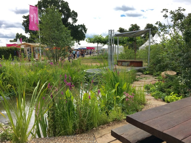 Hampton 2016: WWT Working Wetland Garden by Jeni Cairns