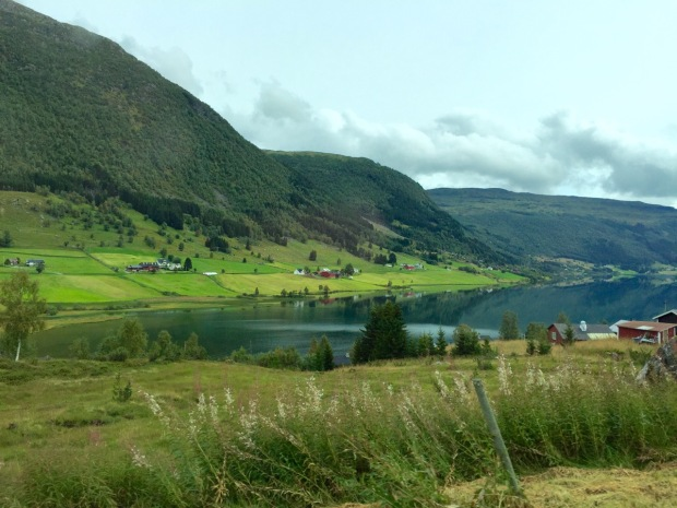 A typical scene as we drove through the western fjords