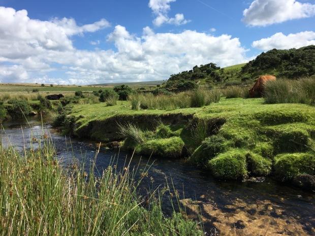 Beautiful Dartmoor National Park