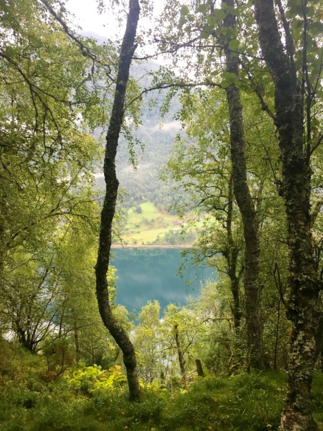 Even as the rain pours down, the colours of the fjords were just stunning