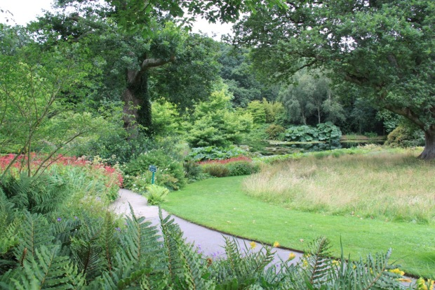 Naturalistic, large scale plantings by the lake at Rosemoor