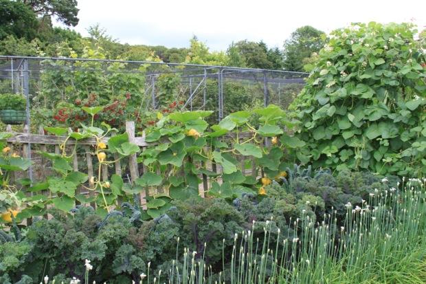 The Fruit and Vegetable Garden at Rosemoor