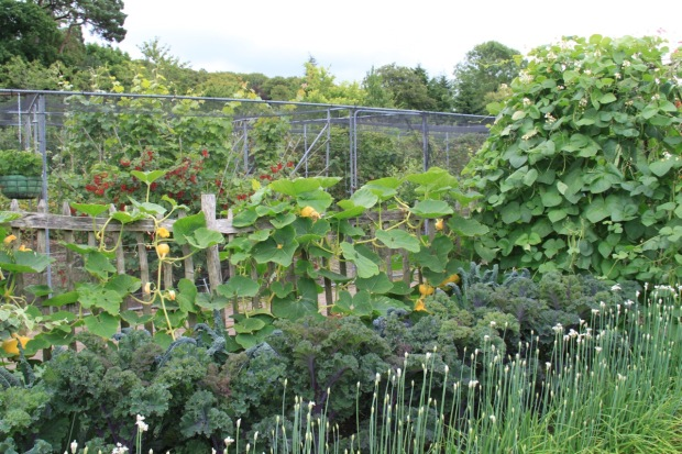 The Fruit and Vegetable Garden at Rosemoor