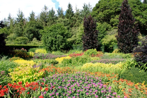 The Hot Garden at Rosemoor