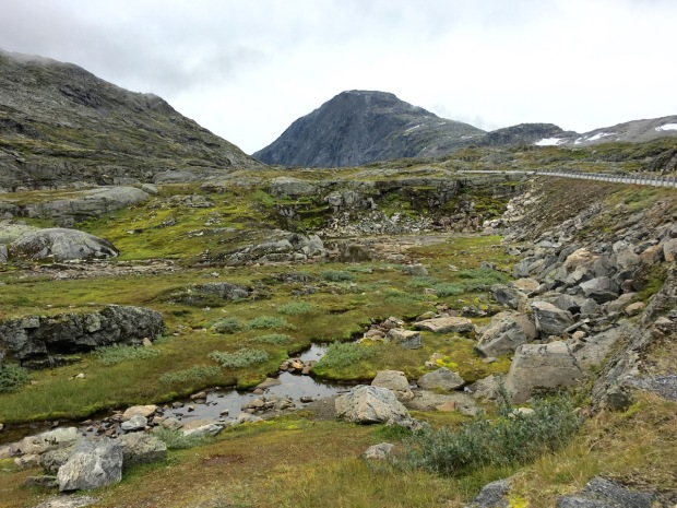 Trollstigen mountain plateau: bleak but it didn't half grow on me quickly