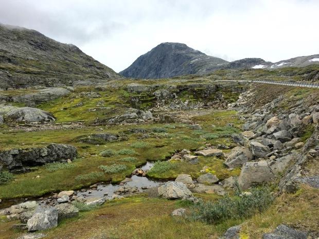 Trollstigen mountain plateau: bleak but it didn't half grow on me quickly