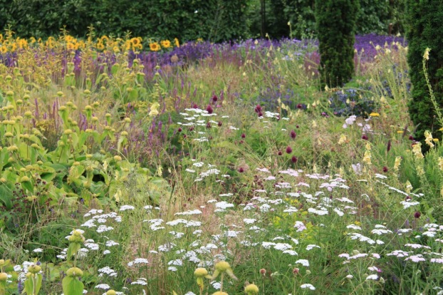 Delicate white yarrow lifts the soothing purples and soft yellows at Broughton Grange