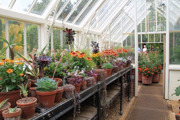 Even the greenhouse at Broughton Grange was an aesthetic delight!