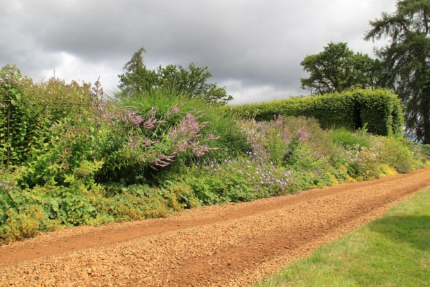 Such a perfect mix of natural but interesting for a country track at Broughton Grange