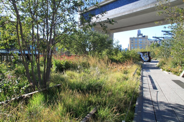 120 artists have shown off their work on the High Line