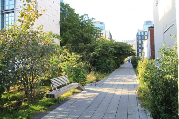 Even the very straightest sections of the High Line don't feel boring; we have much to learn in our small urban plots!