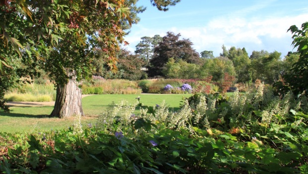Looking out towards the Floral Labyrinth at Trentham Gardens