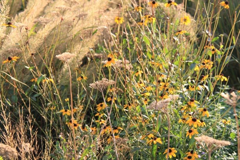 Meadow Walk, the High Line