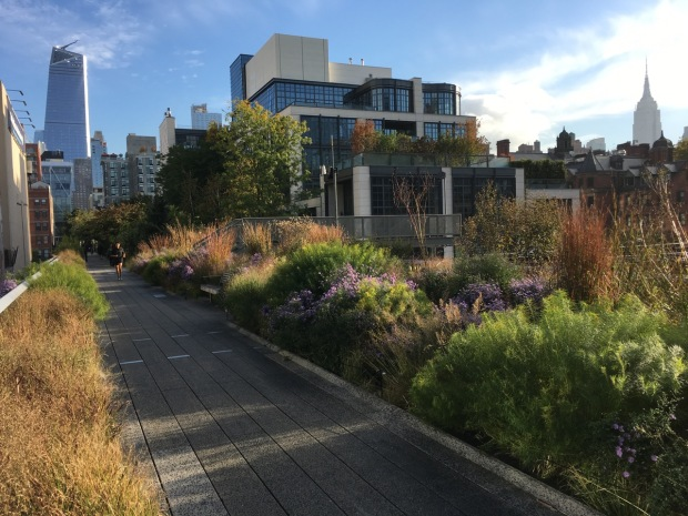Stunning planting (and the Empire State Building) on the High Line