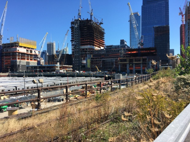 The Rail Yards section of the High Line, part of which has been left untouched to show the tracks in their natural, self-seeded state. And just look at the scale of development in the area.