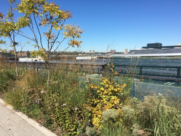 The Rail Yards, The High Line