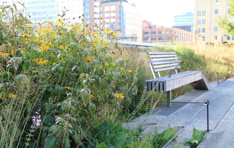 There are so many gorgeous spots to stop and rest on the High Line