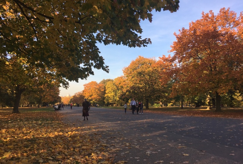 Autumn colours in Hyde Park