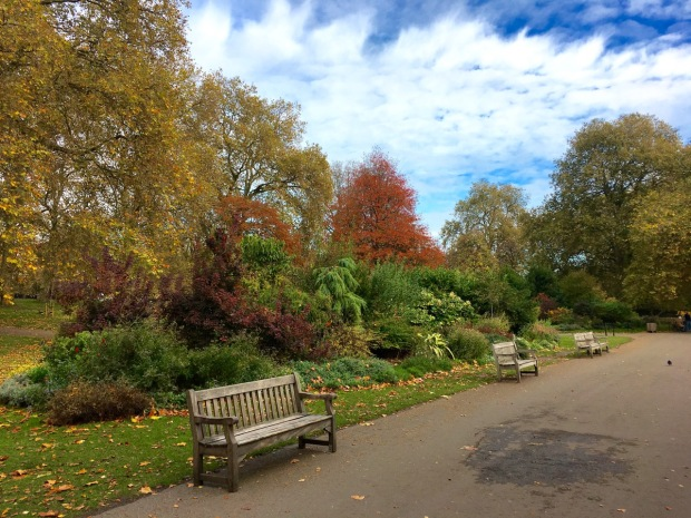 Autumn colours in St James's Park