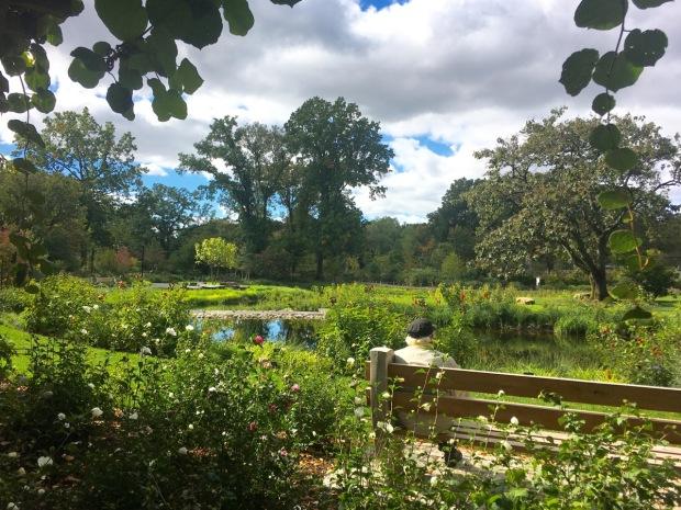 Brooklyn Botanic Garden's new Water Garden