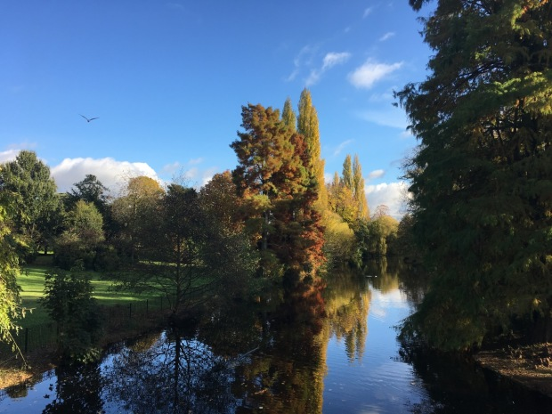 Calmness at Chiswick House and Gardens