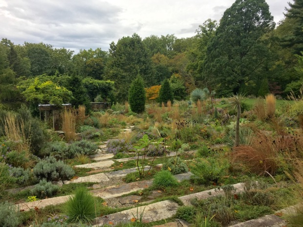 The Gravel Garden boosts structural planting throughout the year