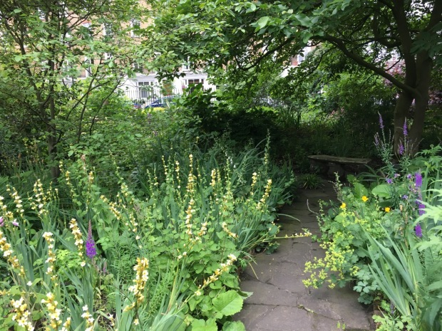Soft planting spills over the pathway at Cadogan Gardens South