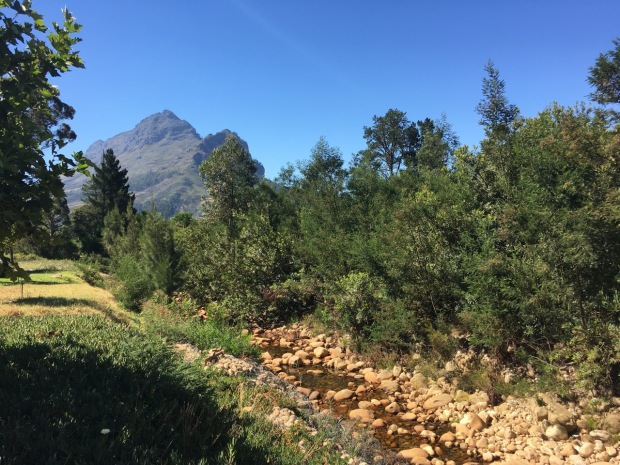 In the hills above Stellenbosch