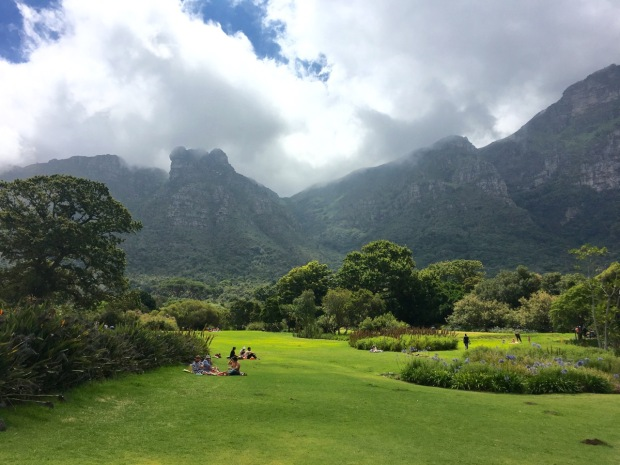Teddy Bear's Rock, Kirstenbosch National Botanic Garden