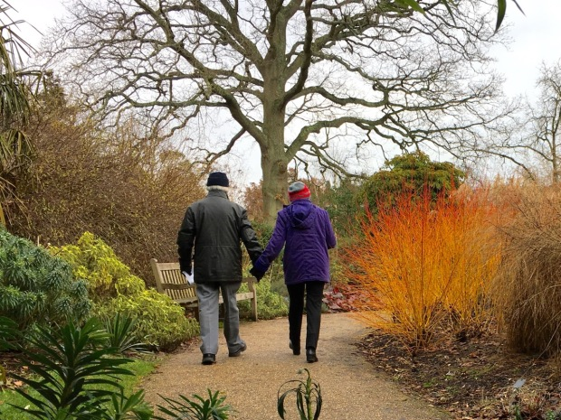 As long as you wrap up warm, the Winter Garden brightens your day even when it's grey outside