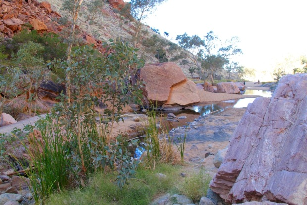Standley Chasm in the West MacDonnell Ranges, Australia. Picture perfect wilderness landscaping