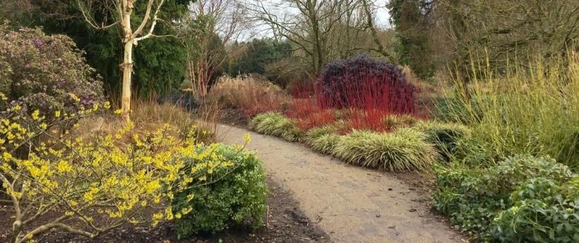 The Winter Garden at Sir Harold Hillier Gardens